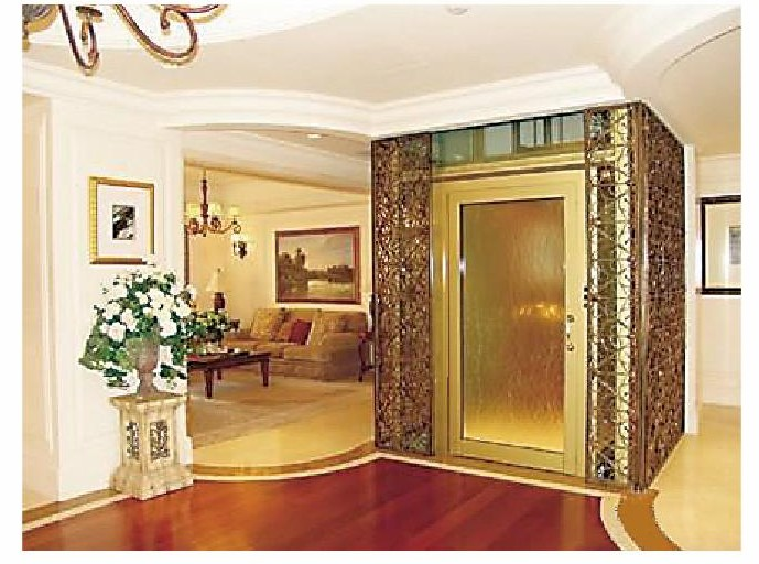 Orient elevators for Elevator house